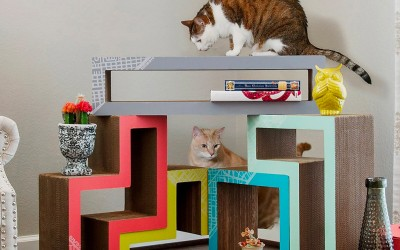 Cat Furniture Solutions for Apartments and Small Spaces